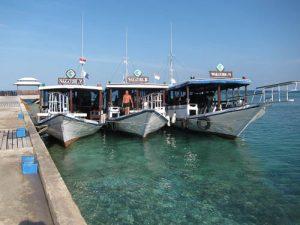 Blog DIVE ASIA IDN Indonesia