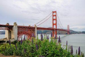 Gallery USA CA California